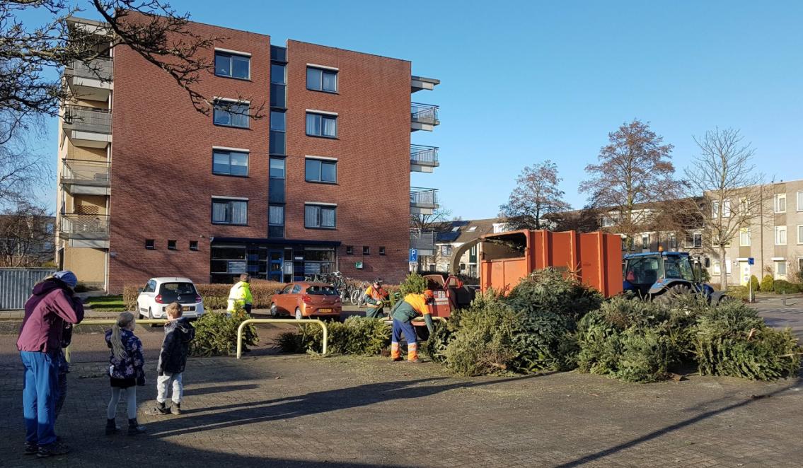 Leuk zakcentje door inzameling kerstbomen