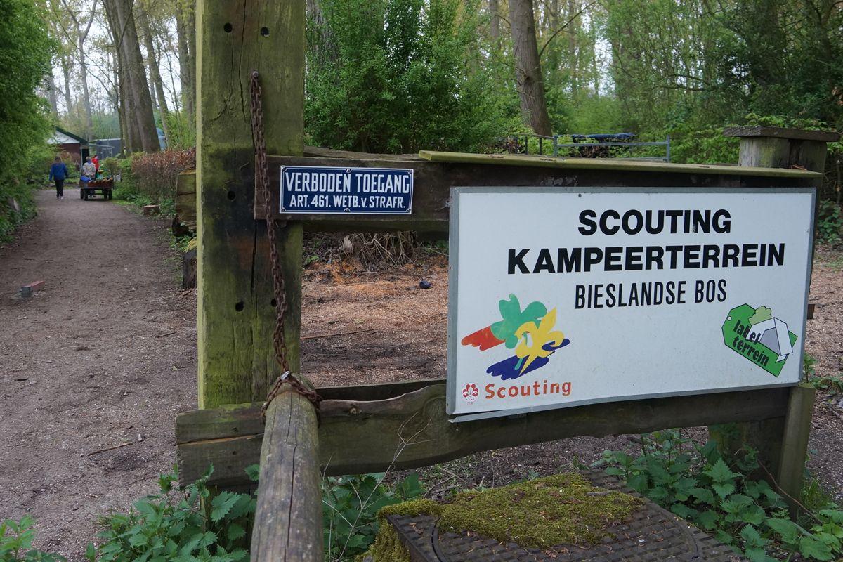 Regionale Scoutingwedstrijden in het Bieslandse Bos
