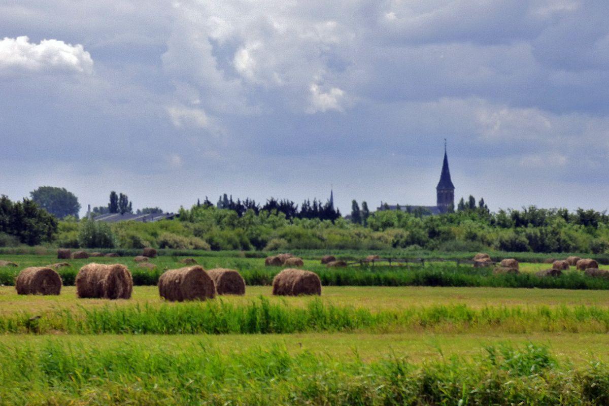Leefbaarheidsonderzoek 2017: fijn wonen in Pijnacker-Nootdorp