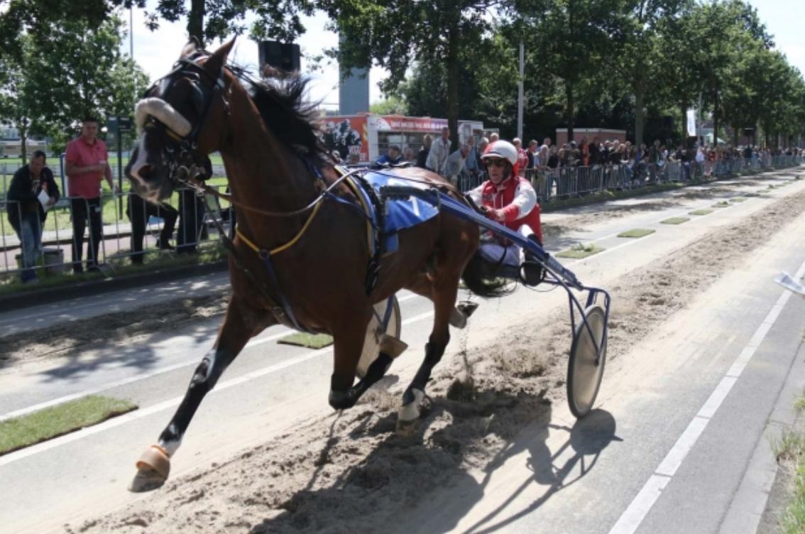 Ponybrunch en kortebaandraverij in Nootdorp