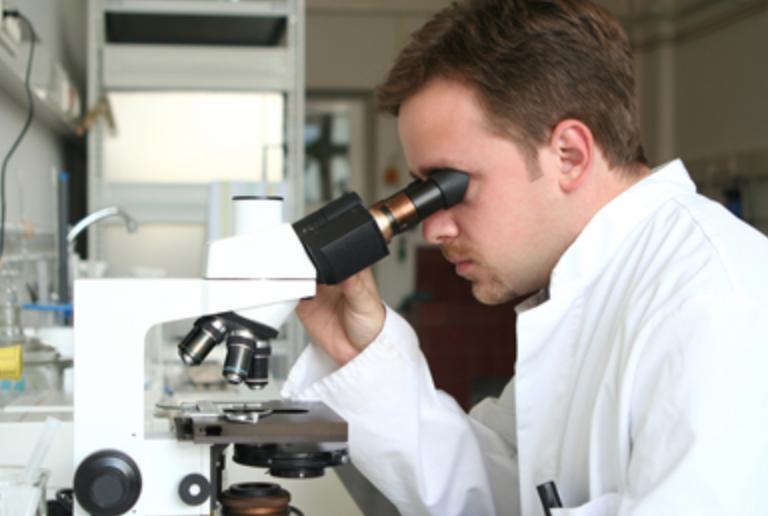 Cursus Maak kennis met de microscoop