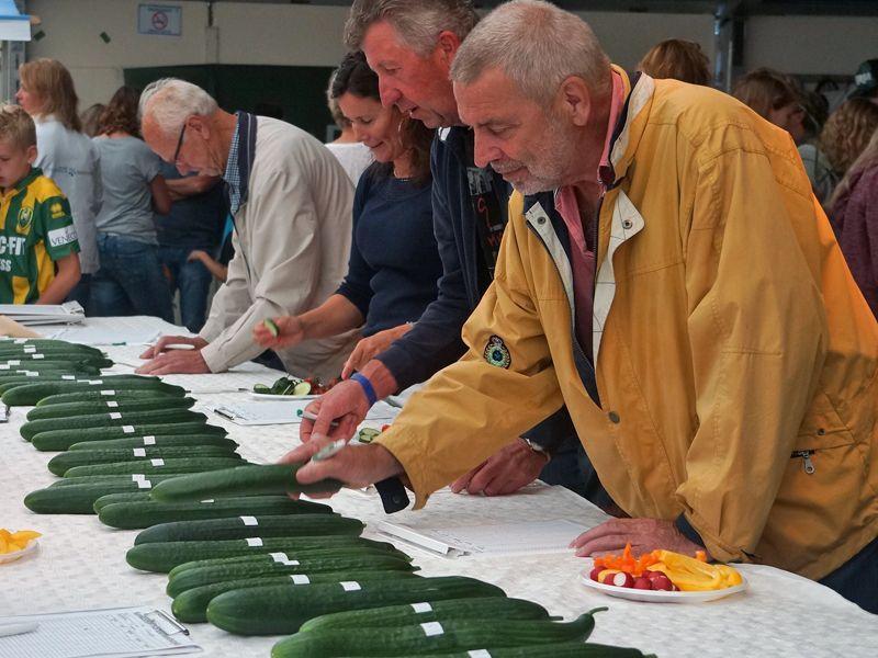 Duizend bezoekers bij NK komkommers sorteren